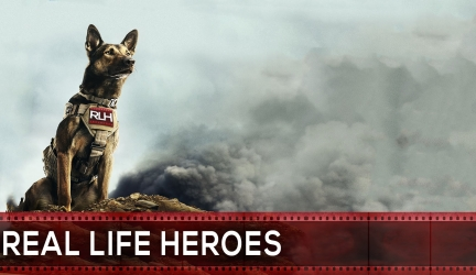 10 Heroic Dogs That Saved People's Lives | REAL LIFE HEROES