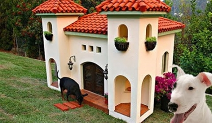 20 Most Luxurious Dog Houses