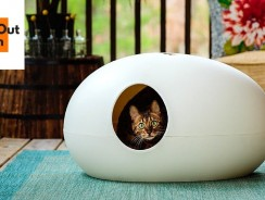 5 Incredible Inventions For Your Cat #3