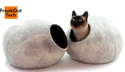 5 Incredible Inventions For Your Cat #6