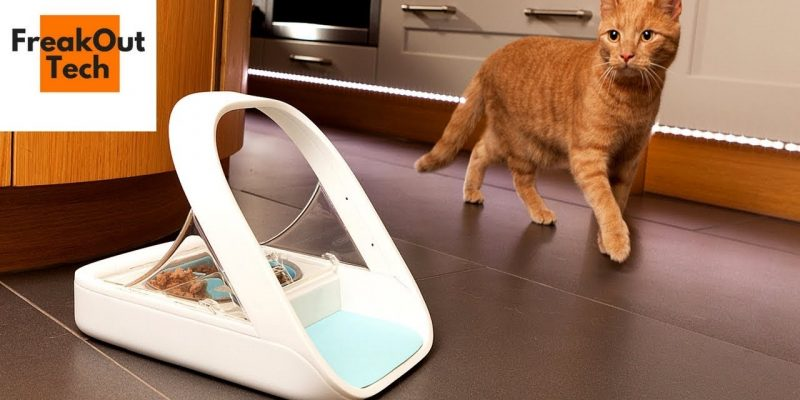 5 Incredible Inventions For Your Cat #2