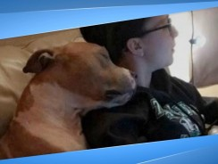 Adopted Dog Can't Stop Hugging The Woman Who Adopted Her