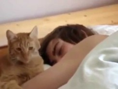 Best Funny Cats Waking Up Owners Compilation
