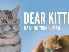 Dear Kitten Video Series: Bathing Your Human