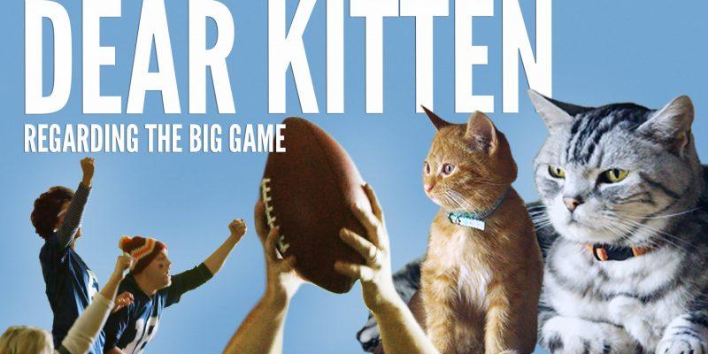 Dear Kitten Video Series: Regarding The Big Game