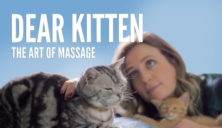 Dear Kitten Video Series: The Art Of Massage