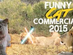 Funny Cat Commercials 2015