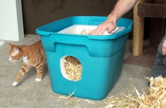 How To Make A Feral Cat Shelter