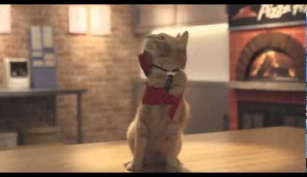 Japanese Pizza Hut Commercials Featuring Cat Employees