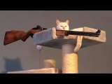 PEE YOURSELF FROM LAUGHING – Super FUNNY ANIMAL compilation