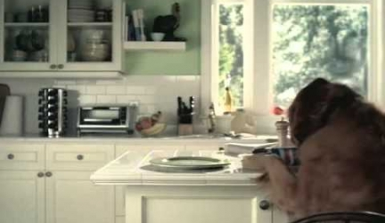 Pepsi Commercial With Dog And Cat