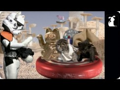 Star Wars Parody – Paw Warz – Not The Toiz You're Looking For