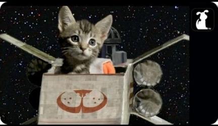 Star Wars Parody – Paw Warz – Trench Run Scene
