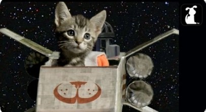 Star Wars Parody – Paw Warz – Trench Run Scene