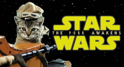 Star Wars: The Purr Awakens