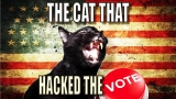 The Cat That Hacked The Votes