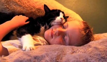 This Family Adopted A 20 Year Old Cat, And He Changed Their Lives In A Completely Unexpected Way