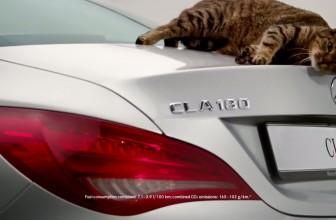 Top 3  Best Cat Car Commercials Ever