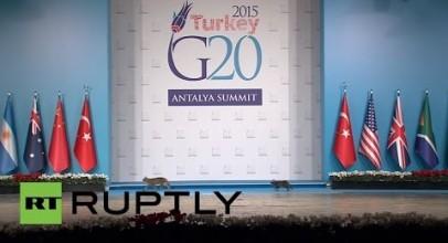 Turkey: Cats Break Through G20's Tight Security