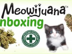Unboxing MEOWIJUANA Catnip Meowi-Waui Strain.