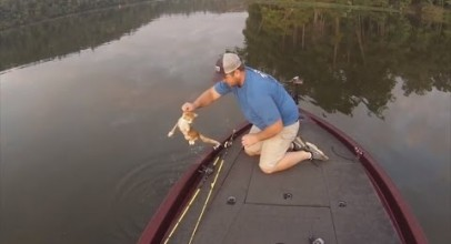 Watch a Fisherman Catch and Rescue Two Kittens Swimming in River